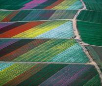 Alex MacLean: Aerial Photography